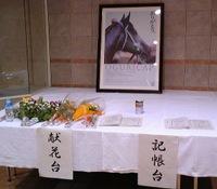 Oguricapcondolence1