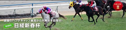 Top20110116nikkeishinshunhai