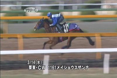 2012flowercmeishoszannay1161