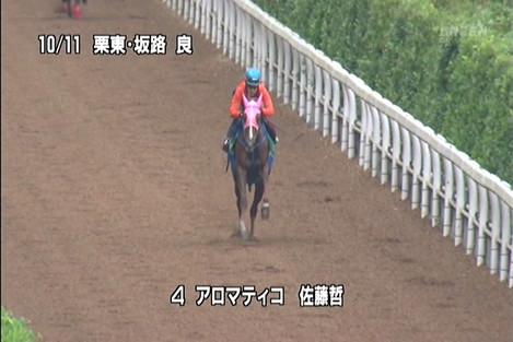 20121014shukashotaromatico4