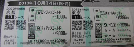 Bt20131014fuchuhimbakiyoizus