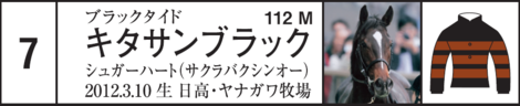 Dm20150419satsukishogate7up