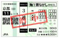 Bt20100117nikkeishinshunhai3
