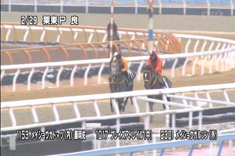 2012yayoishomeishokadomatsu11531017