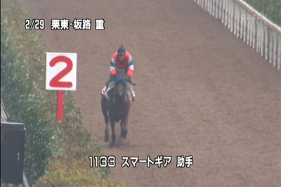 2012chunichishimbunhaismartgeart113