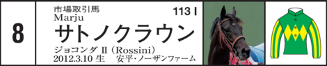 Dm20150419satsukishogate8up